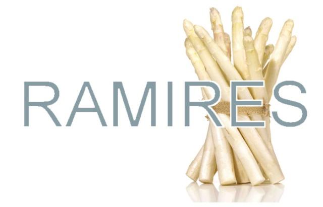 Ramires